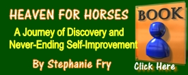 Read The Synopsis Of Stephanie Fry's Book!